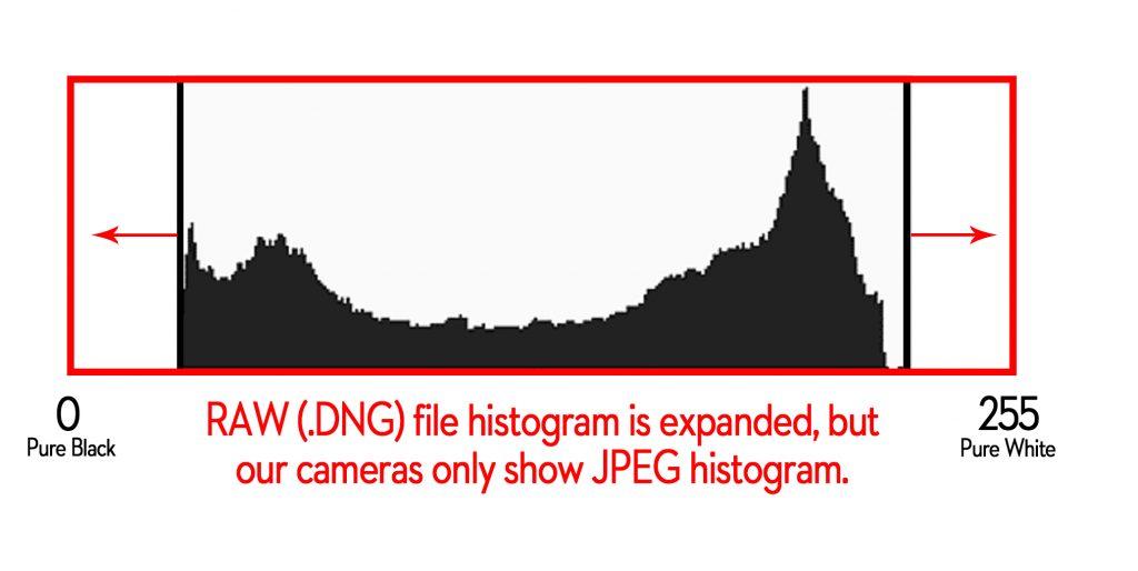 Raw Histogram vs. JPEG histogram